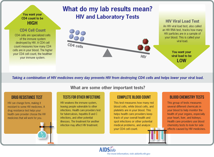 Lab Tests And Results  Hivgov Aidsinfo What Do My Lab Tests Mean Infographic